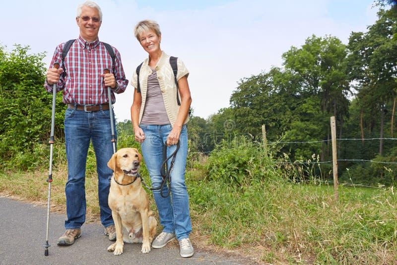 Povos superiores que caminham com cão foto de stock royalty free