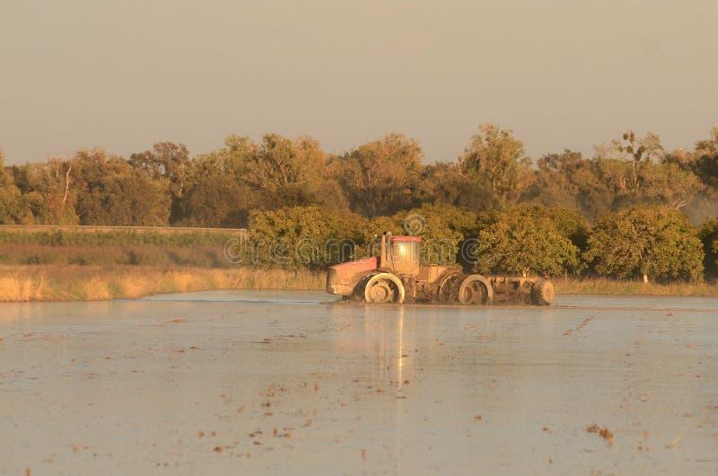 Powódź ciągnik zdjęcia royalty free