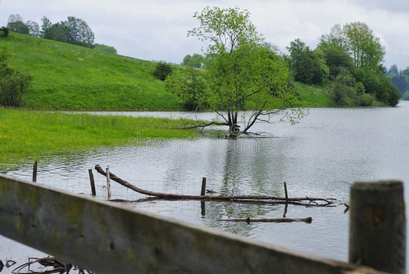 Powódź - zalewający zieleni tereny fotografia royalty free