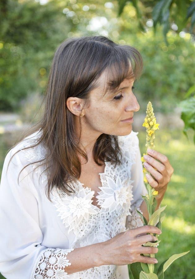 powąchaj kobiety kwiat obraz stock
