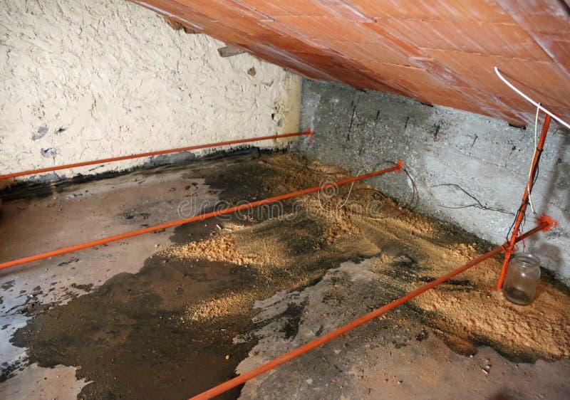 poważńy problem wilgoć i seepage od dachowej opłaty th obrazy royalty free