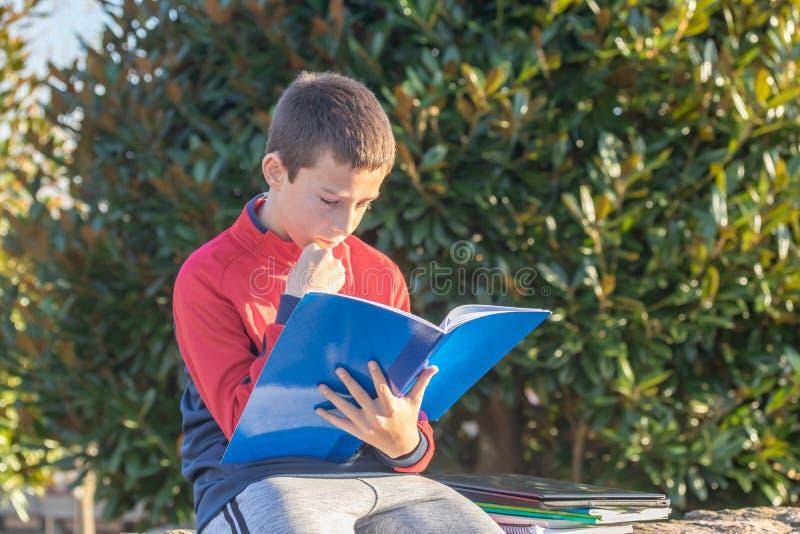 Poważny nastoletni chłopak z podręcznikami i notatnikami robi pracie domowej i przygotowywa dla egzaminu w parku zdjęcia stock
