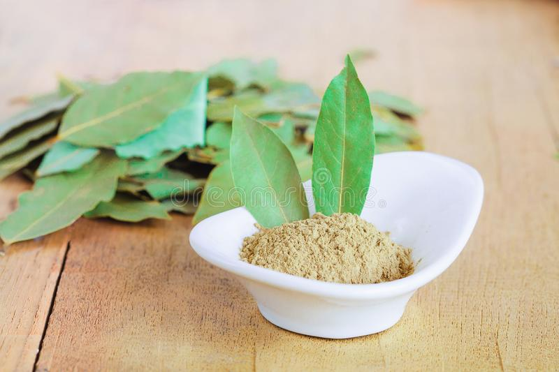 Powder of dried bay leaf of the bay tree stock image