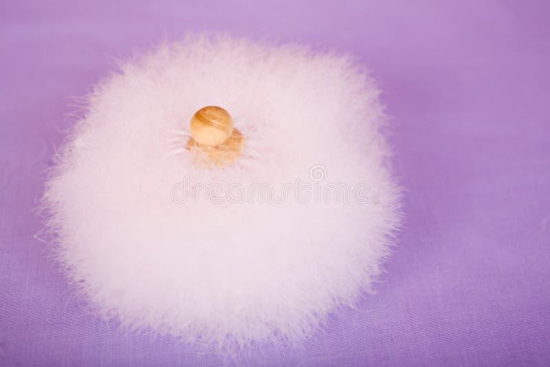 Download Powder Puff on Purple stock photo. Image of apply, applicator - 11475872