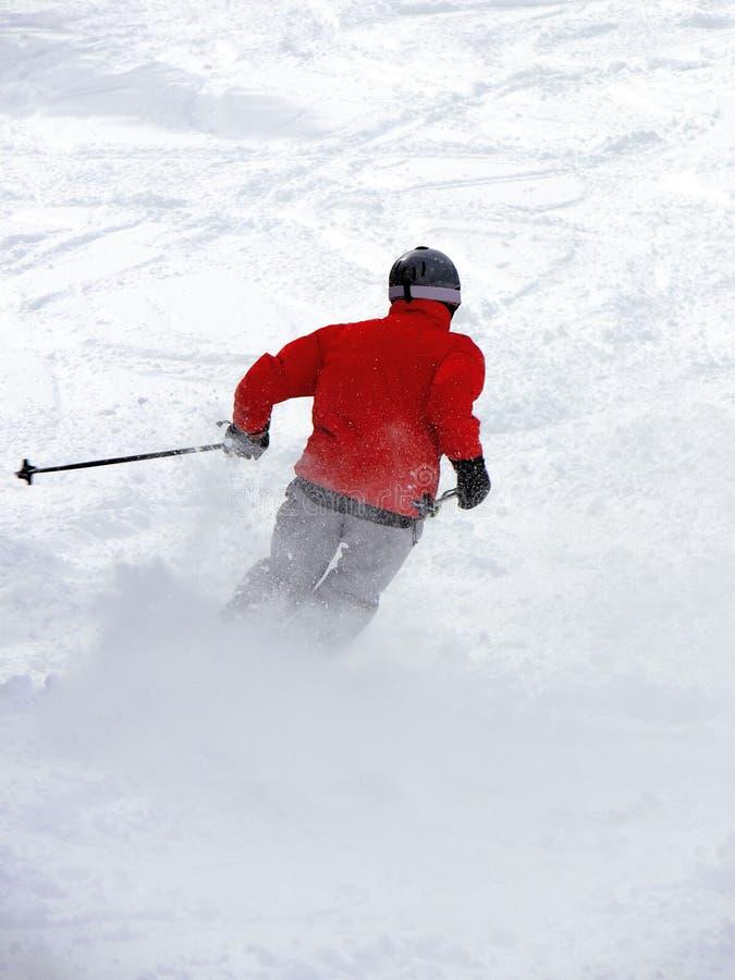 Download Powder Skiing Royalty Free Stock Photography - Image: 3628117