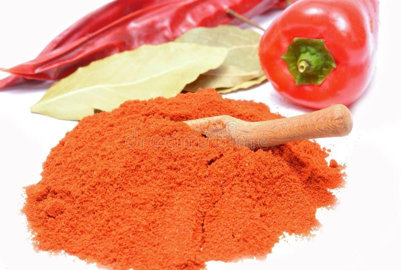 Powdered ha asciugato il peperone, paprica della polvere immagini stock libere da diritti