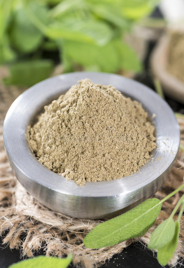 Download Powdered Sage stock image. Image of kibbled, bunch, leaves - 39515607