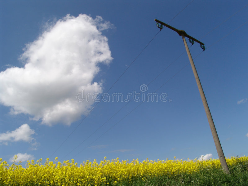 power field stock images