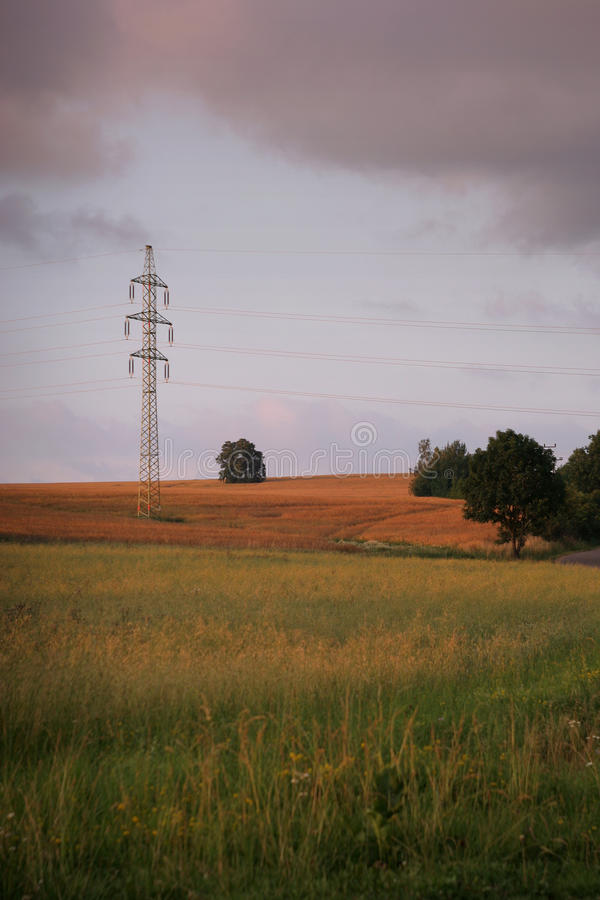 Power line tower. High voltage power line in the wheat field stock images