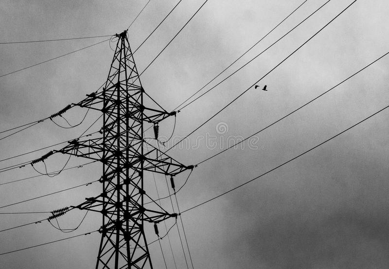 Power line and two birds flying towards it royalty free stock photos
