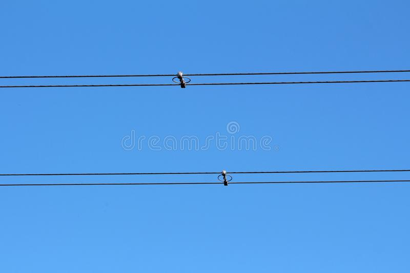 Power line utility black electrical wires held together with insulators and spacers on clear blue sky back royalty free stock images