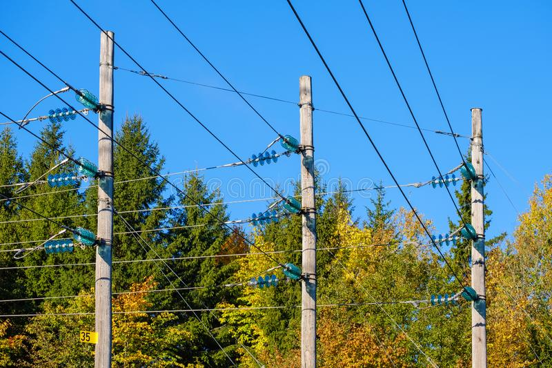 Power line wood poles in an autumn  forest royalty free stock photo