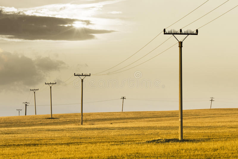Power poles stock photography