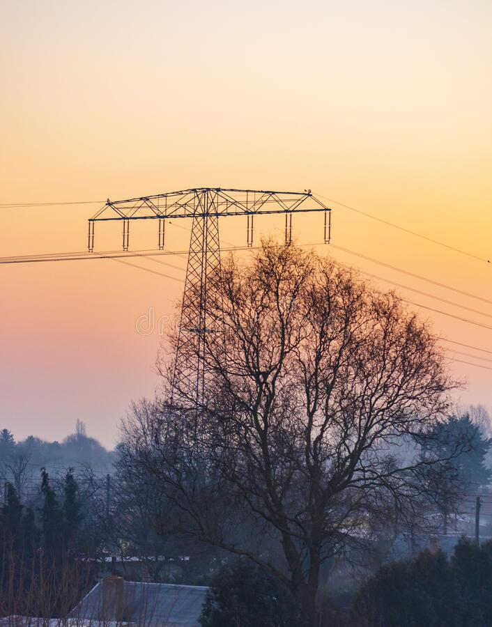 A power pylon and a tree in front of a sunrise on a misty morning. A power pylon and a tree in front of a sunrise  in Berlin on a misty morning royalty free stock image