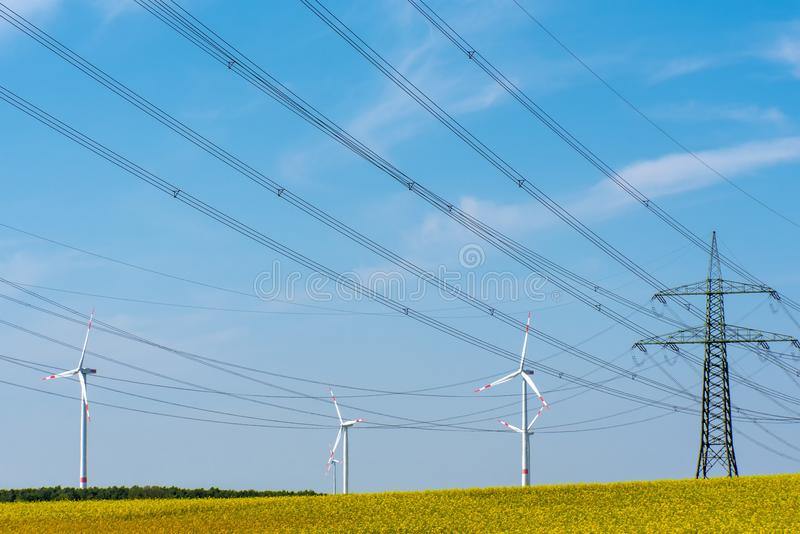 Power transmission lines in a field of flowering oilseed royalty free stock photography