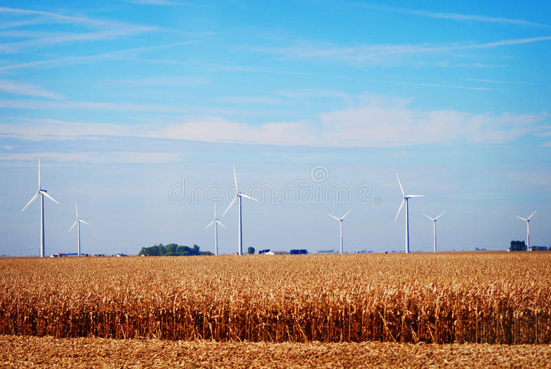 The power windmills in rural Indiana on a sunny day. The large, white power windmills against a blue cloudy sky with golden field of corn royalty free stock photography
