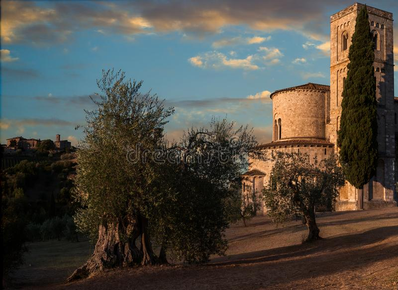 Fresh Golden Lights. The powerful golden light of the Rising Sun came and flooded the countryside around Sant`Antimo Abbey - Castelnuovo dell`Abate, Montalcino stock image
