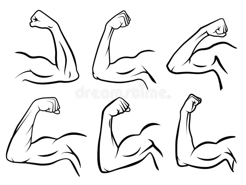 Powerful hand muscle. Strong arm muscles, hard biceps and hands strength outline vector illustration set. Powerful hand muscle. Strong arm muscles, hard biceps stock illustration