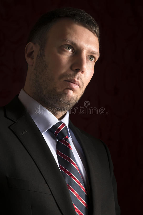 Download Powerful man stock image. Image of standing, serious - 28796015