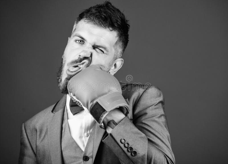 Powerful man boxer ready for corporate battle. knockout and energy. Fight. Business and sport success. businessman in. Formal suit and bow tie. bearded man in royalty free stock images