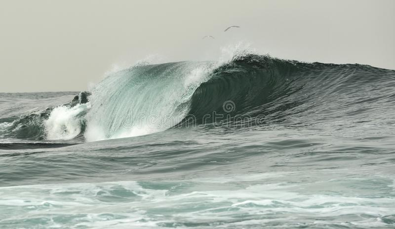 Powerful ocean wave breaking. Wave on the surface of the ocean. Wave breaks on a shallow bank. Natural background royalty free stock images