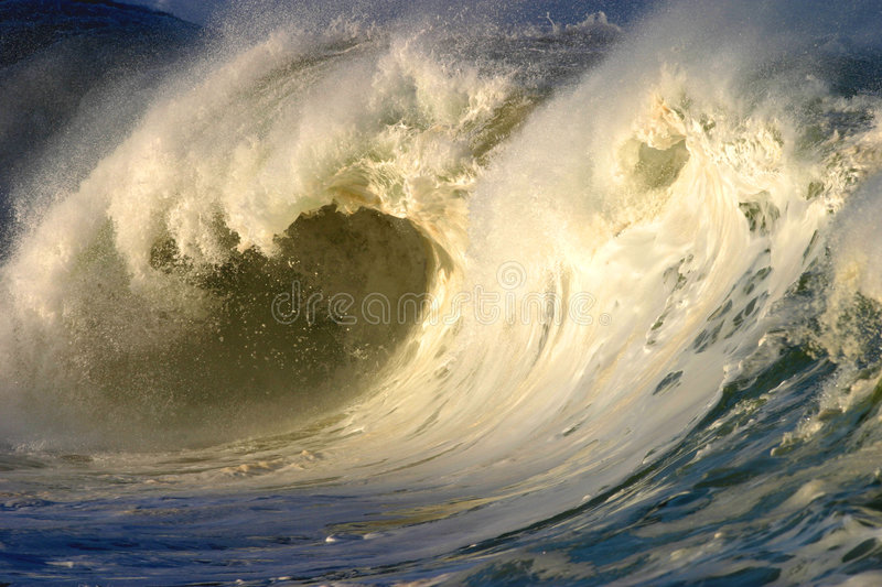 Powerful White Wave in Hawaii royalty free stock image