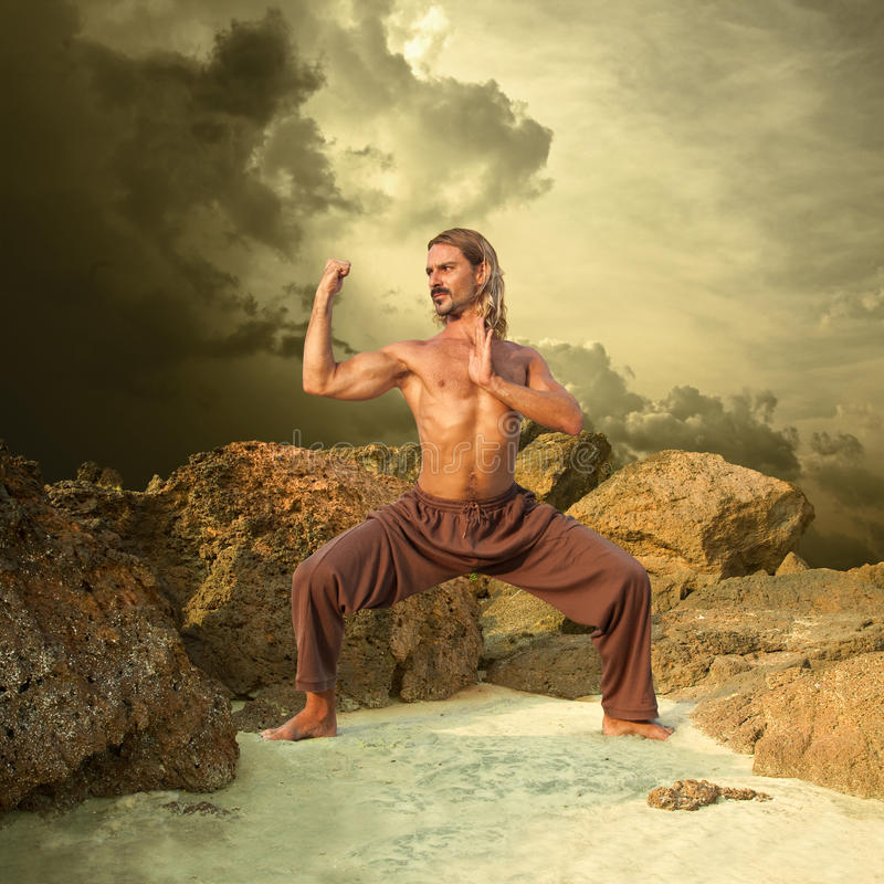Powerful Young Man Trains in Karate royalty free stock photos