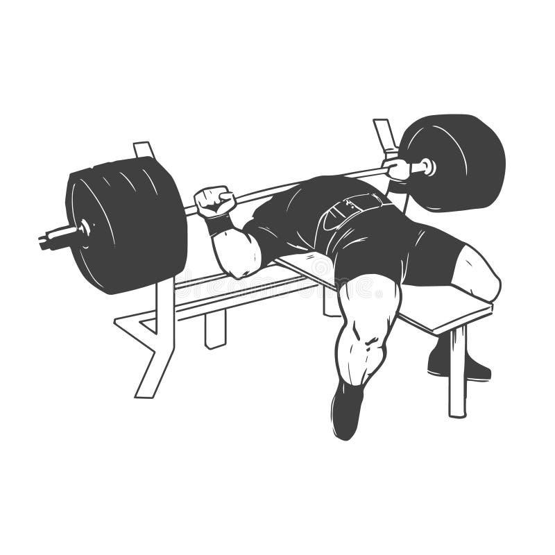 Powerlifting bench press vector illustration