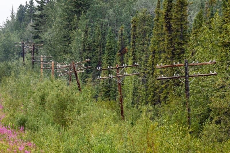 Powerline along the Alaska Highway royalty free stock photography
