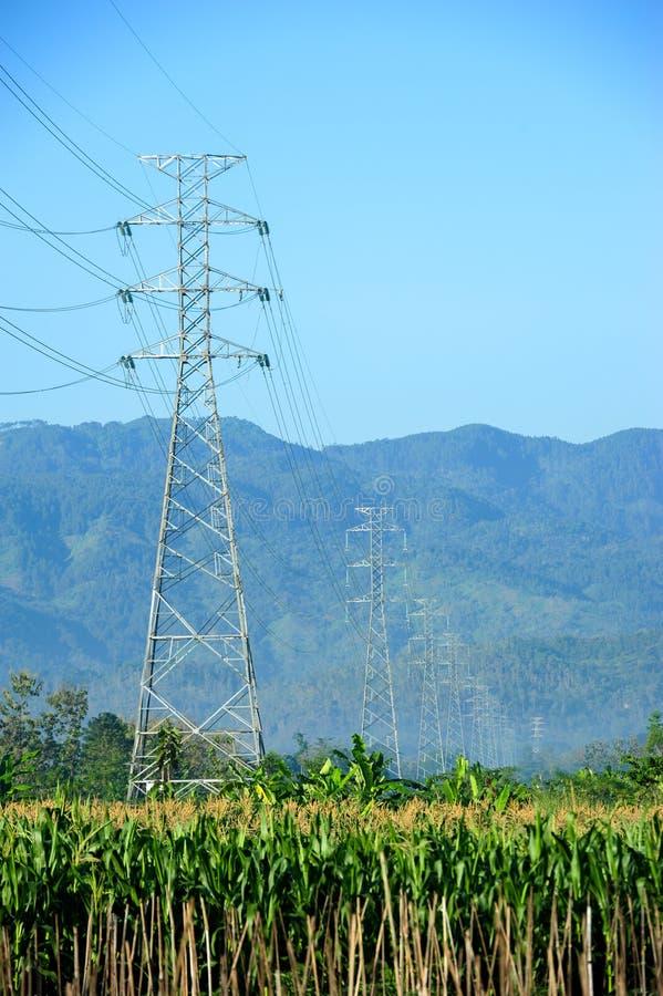 Powerline die landbouwgebied kruisen stock afbeelding