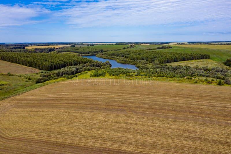 Powietrzna sceneria lasowy jezioro od trutnia latania naprzód fotografia royalty free