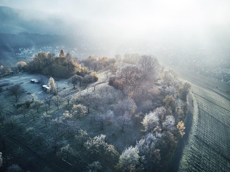 Powietrzny śnieg Zakrywający drzewo trutnia materiału filmowego krajobrazu zimy natury Europa podróży Piękny Lasowy Halny biel Sł fotografia royalty free