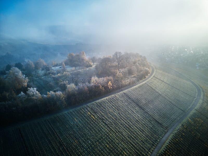 Powietrzny śnieg Zakrywający drzewo trutnia materiału filmowego krajobrazu zimy natury Europa podróży Piękny Lasowy Halny biel Sł obraz royalty free