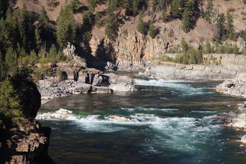 Powietrzny Footpath krzyżuje Dziką Kootenai rzekę w górach Północno-zachodni Montana obrazy royalty free