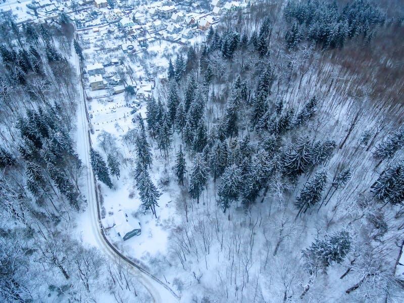 Powietrzny odgórny widok las i odłączający domy w zimie zdjęcie stock