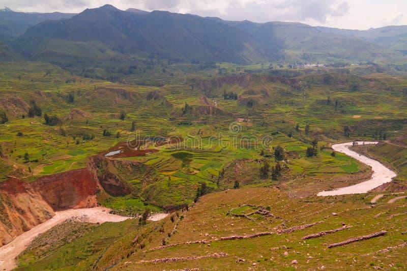 Powietrzny panoramiczny widok Colca jar od antahuilque punkt widzenia, Chivay, Arequipa, Peru obrazy royalty free