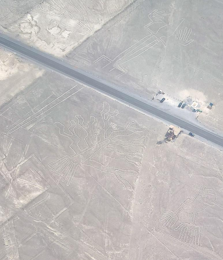 Powietrzny samolotowy panoramiczny widok Nazca geoglyph wykłada aka jaszczurki, ręk i drzewa, Ica, Peru obrazy stock