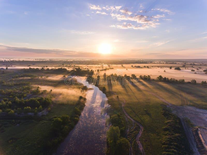 Powietrzny wschód słońca z mgłą przy drzewo wierzchołkami w wiejskiej wsi obrazy royalty free