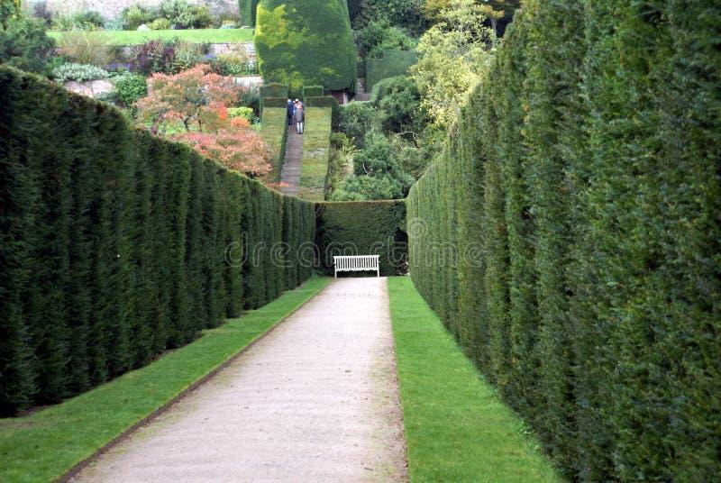 Powis城堡庭院在英国 免版税库存图片