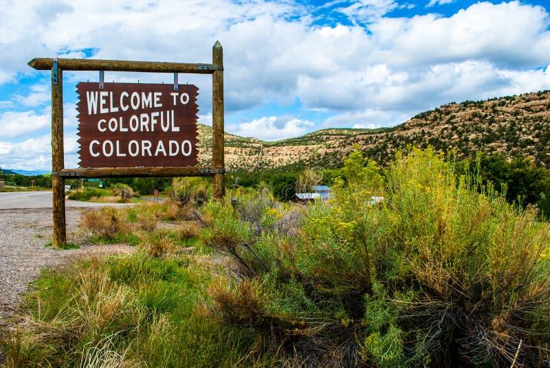 Powitanie Kolorowy Kolorado znak obok dużego Żółtego Dzikiego Bush zdjęcia royalty free