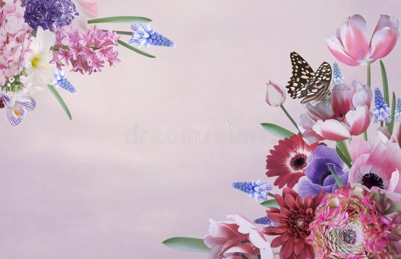 Powitanie lub wizytówka Bukiet piękni ogrodowi kwiaty ilustracja wektor
