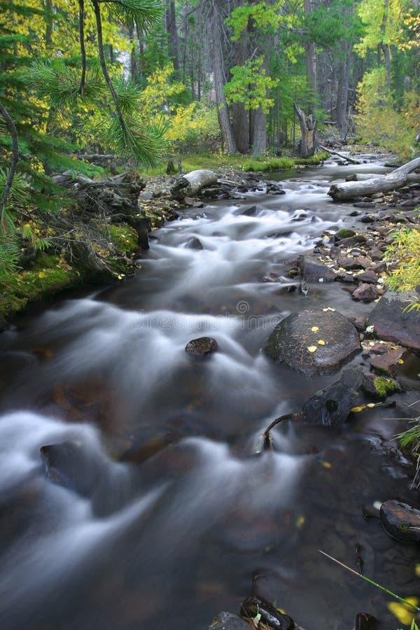 powoli wody fotografia stock