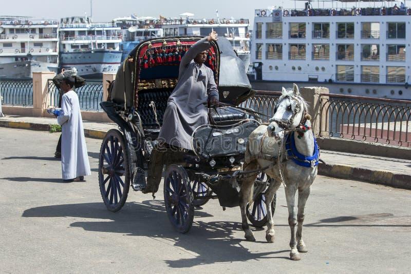 Powozik i koń czekać na klientów obok Rzecznego Nil w Edfu, Egipt obraz royalty free