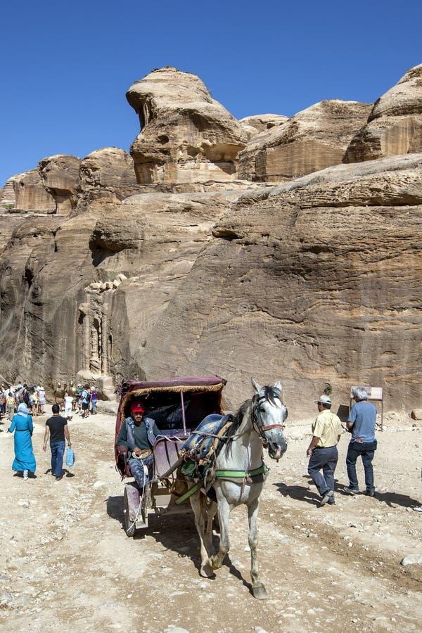 Powozik i koń przewodzimy w kierunku wejścia Petra w Jordania fotografia royalty free