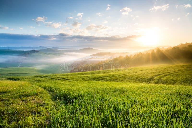 Powstający słońce w Tuscany, Włochy obraz royalty free
