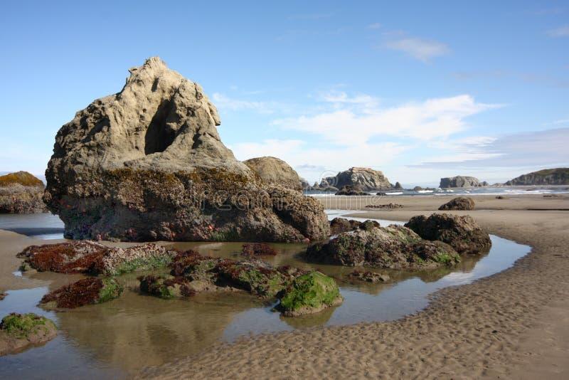 Powulkaniczne Denne sterty na Oregon wybrzeżu w czasie odpływu morza zdjęcie royalty free