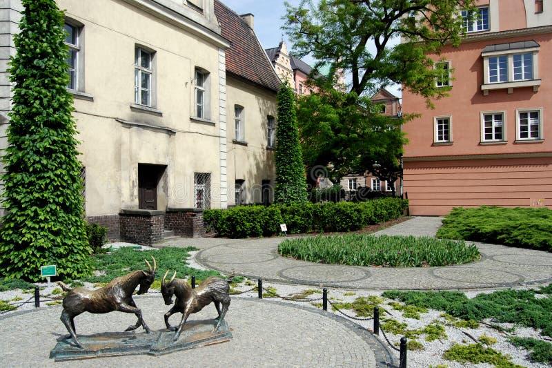 Poznan, Polen: Kolegiacki Quadrat lizenzfreie stockfotos