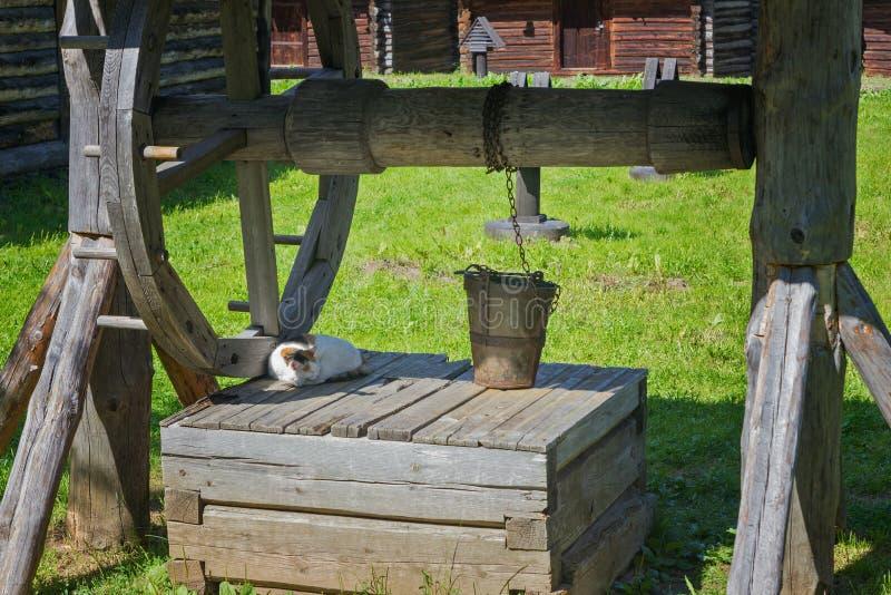 Pozo de agua de madera antiguo y el gato fotos de archivo