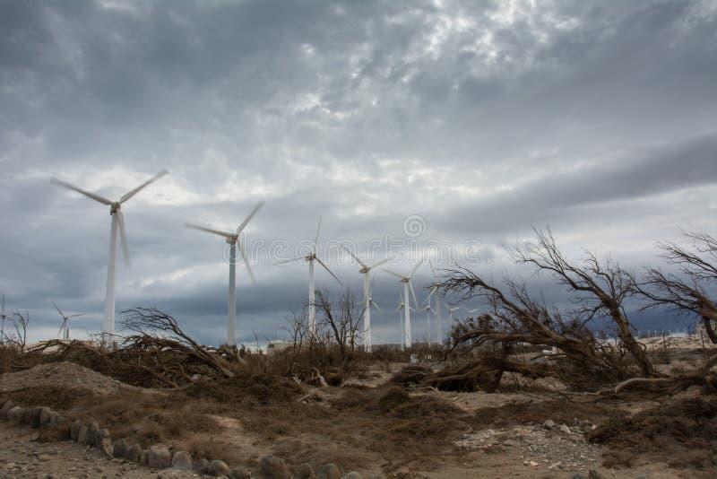 Pozo Izquierdo, onde o vento vive foto de stock