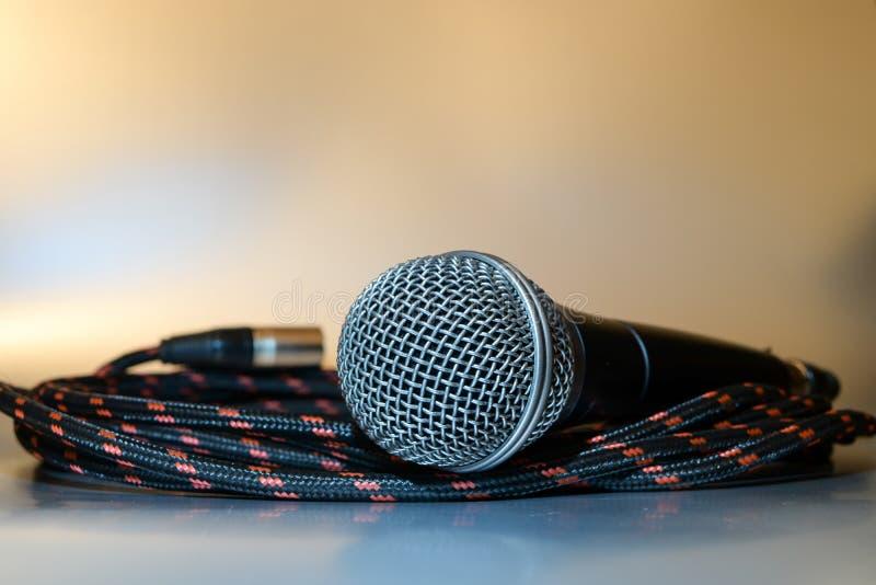 Pozwala muzyczną sztukę z fachowym mikrofonem zdjęcie royalty free